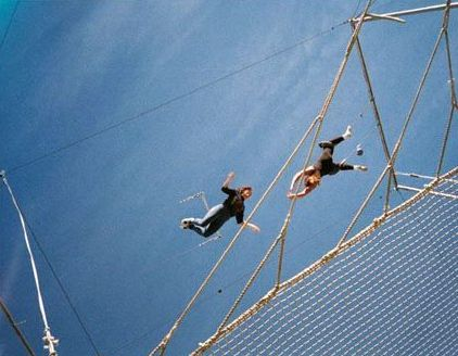 Why are so few trying to fly above their safety net?